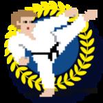 Kuro Obi Karate adds 16 Achievments